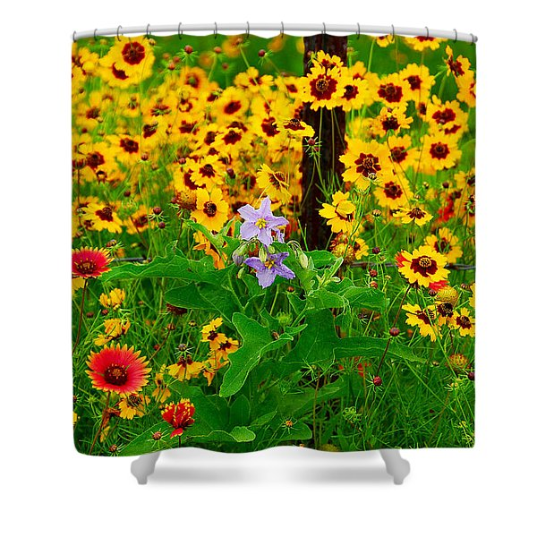 Texas Spring Delight Shower Curtain