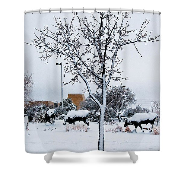 Shower Curtain featuring the photograph Heritage Grounds by Mae Wertz