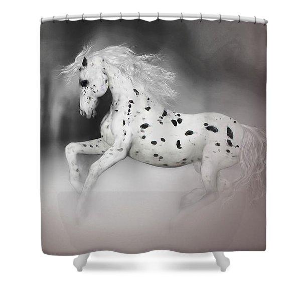 The Appaloosa Shower Curtain