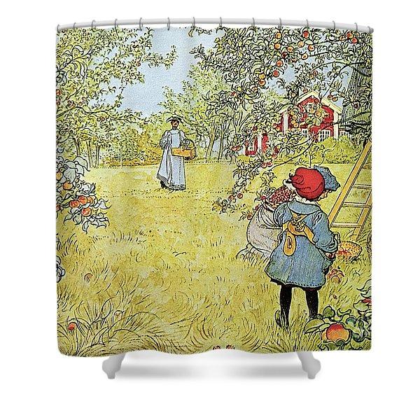 The Apple Harvest Shower Curtain