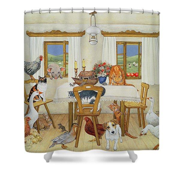 The Ark, 1994 Shower Curtain