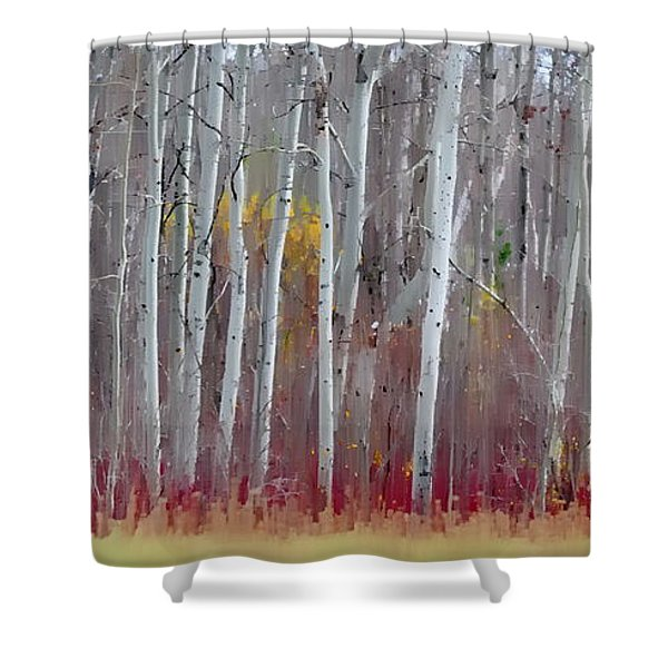 The Birches Panorama  Shower Curtain