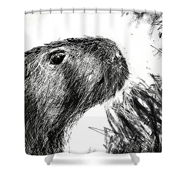 The Capybara  Shower Curtain
