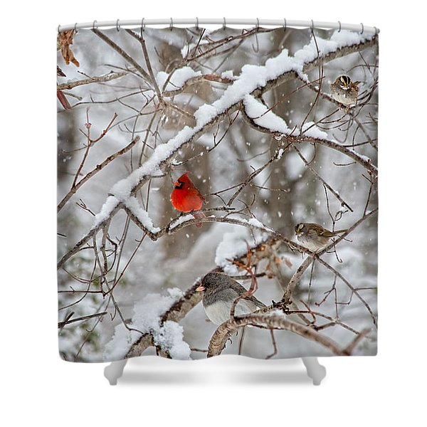 The Cardinal Rules Shower Curtain