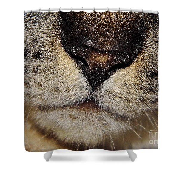 The - Cat - Nose Shower Curtain