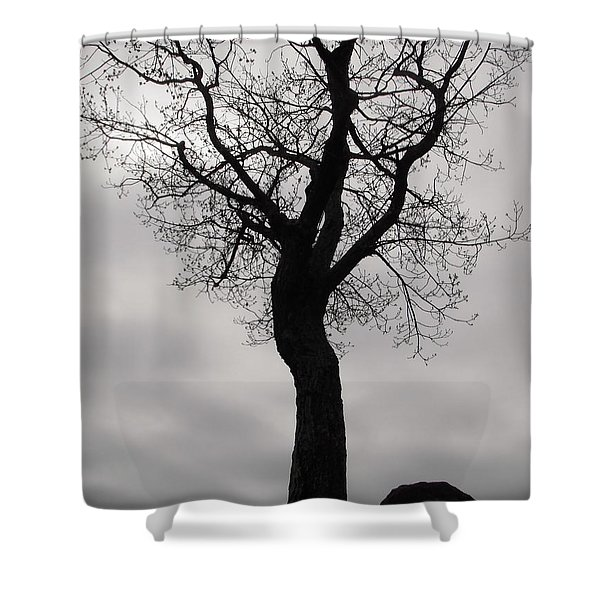 The Chill Of Spring In The Shenandoah Shower Curtain