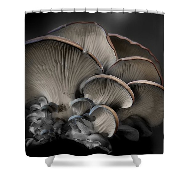 Painted Fungus Shower Curtain