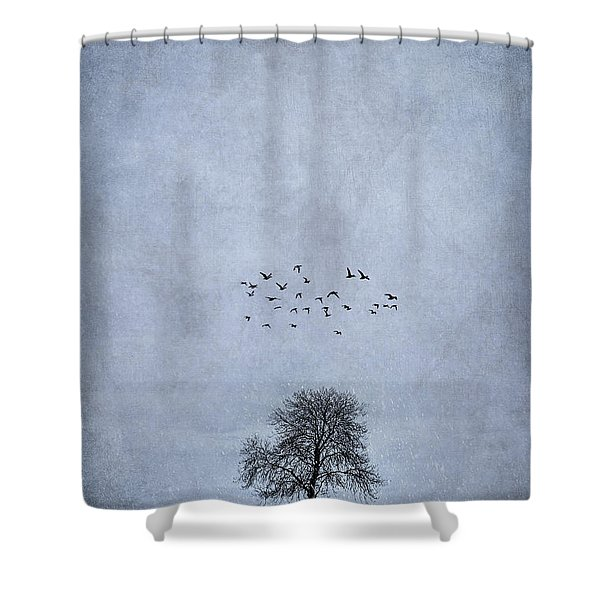 The Day Of Destiny Shower Curtain