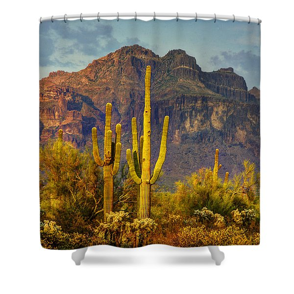 The Desert Golden Hour II  Shower Curtain