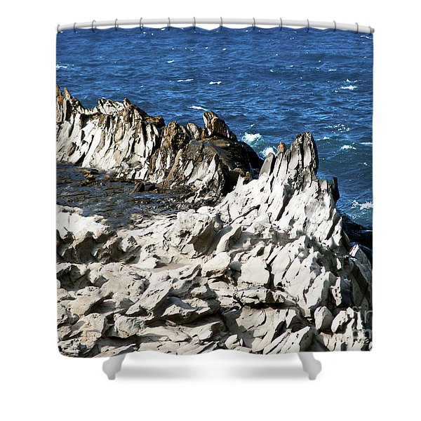 The Dragons Teeth I Shower Curtain