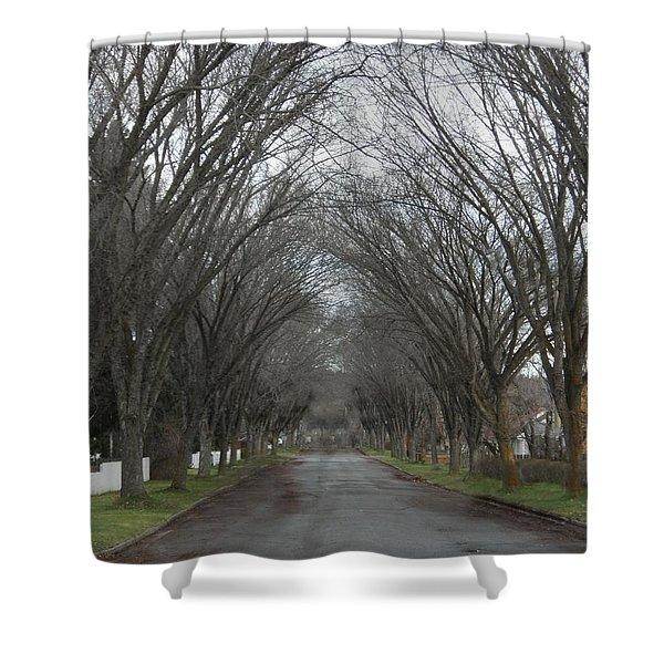 The Elm Arch Shower Curtain