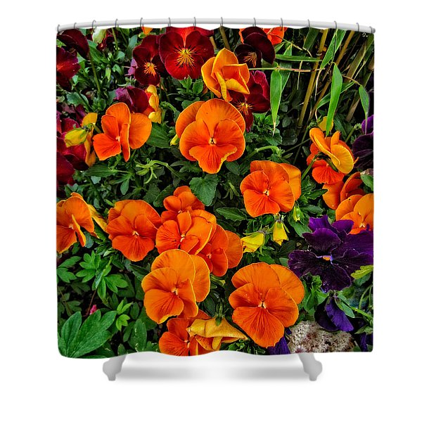 Fall Pansies Shower Curtain