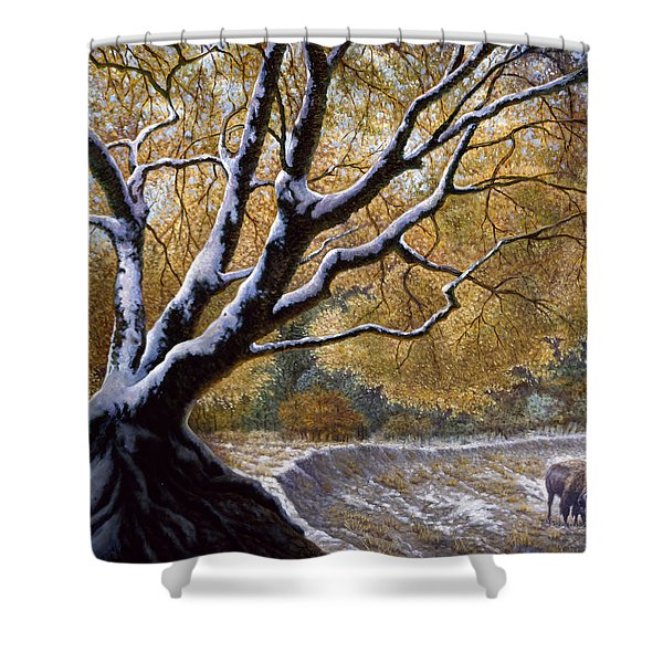 The First Snow Idaho Shower Curtain