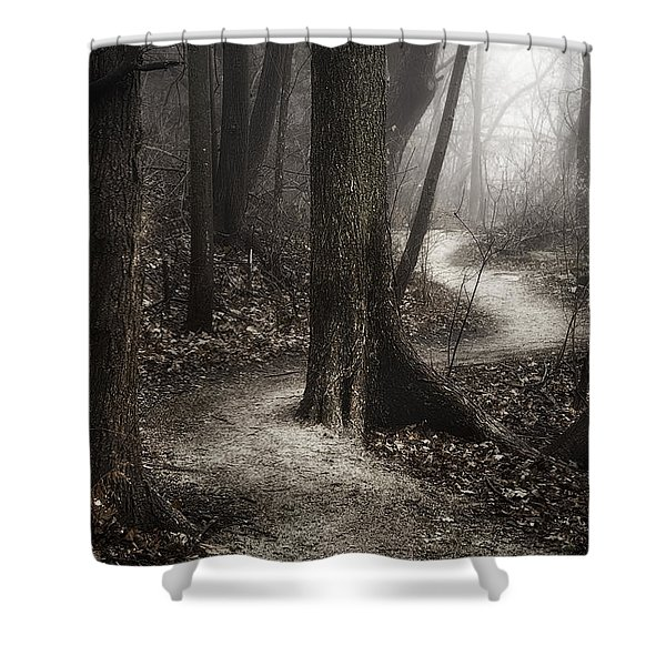 The Foggy Path Shower Curtain