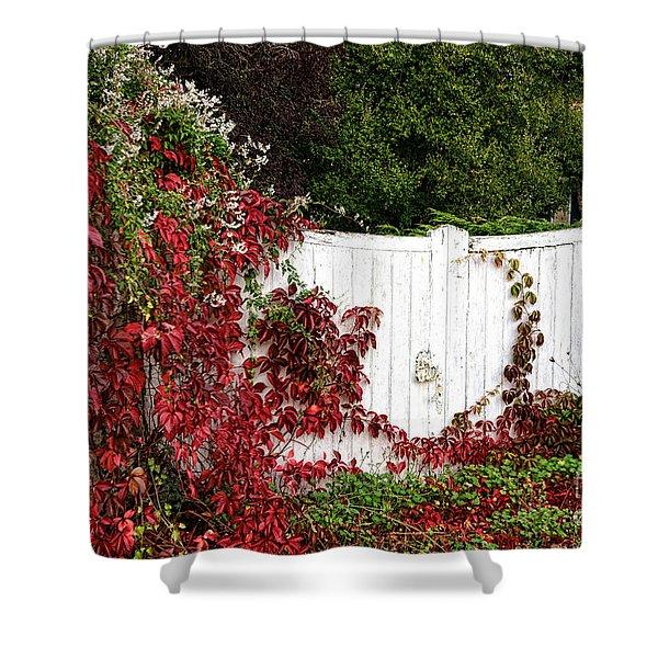 The Forgotten Gate Shower Curtain