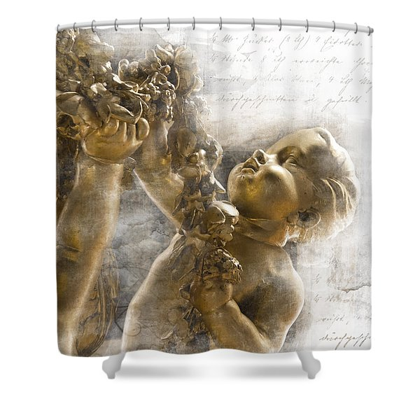 The Glory Of France Shower Curtain