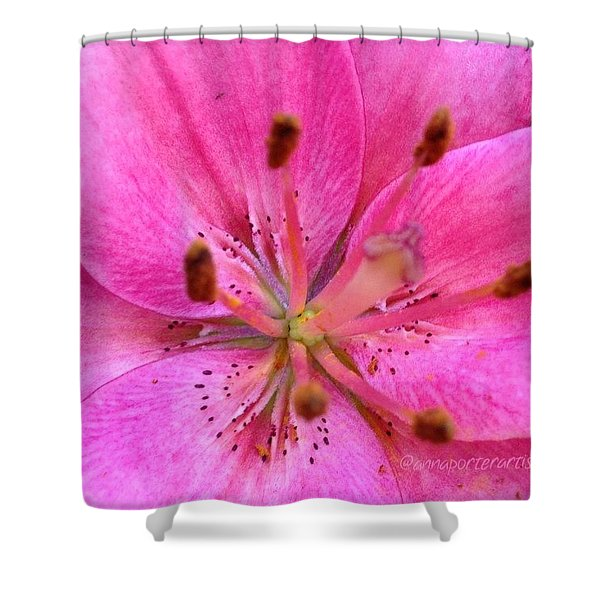 The Heart Of The Matter - Pink Lily Shower Curtain