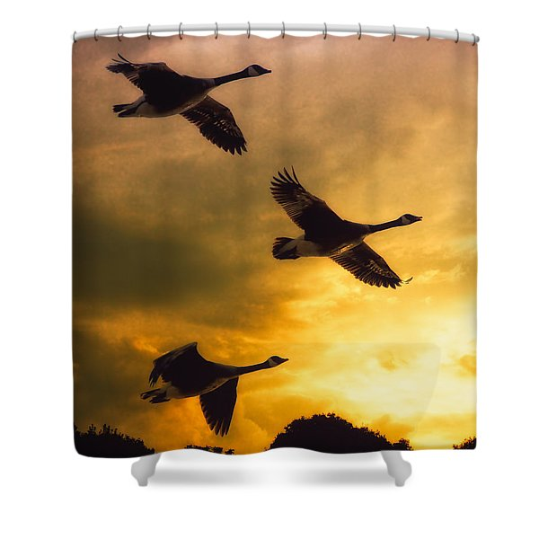 The Journey South Shower Curtain