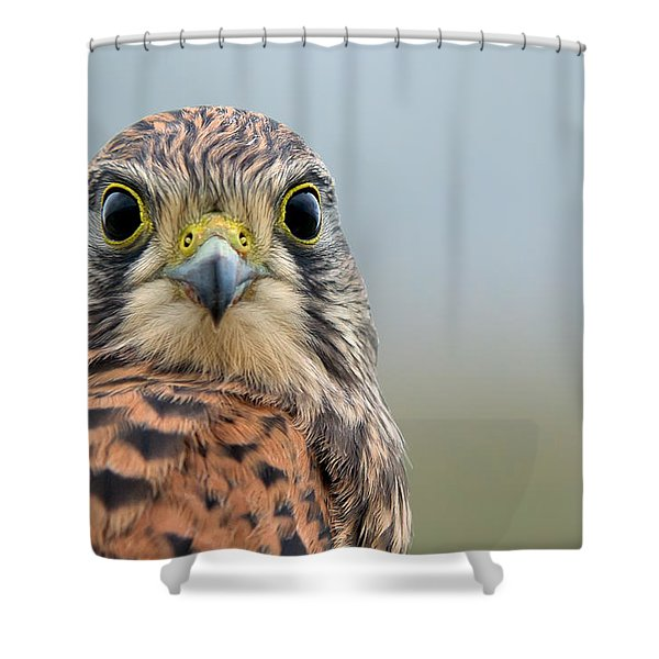 The Kestrel Face To Face Shower Curtain