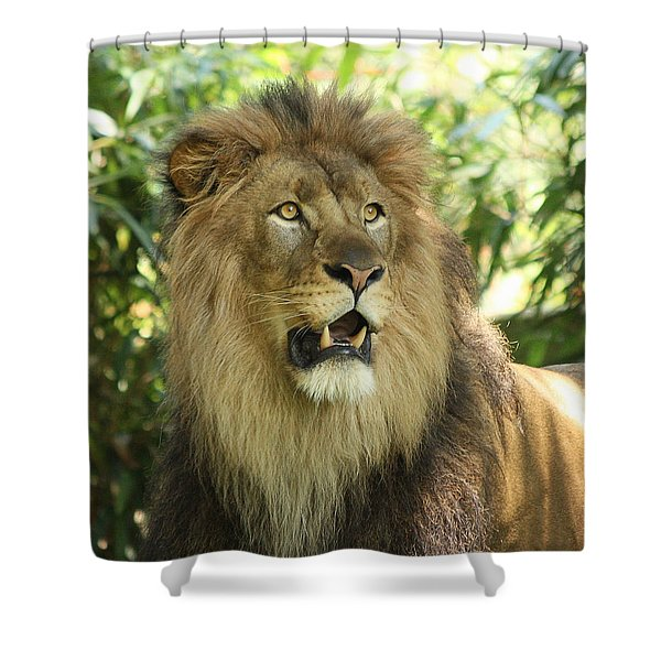 The Lion King Shower Curtain