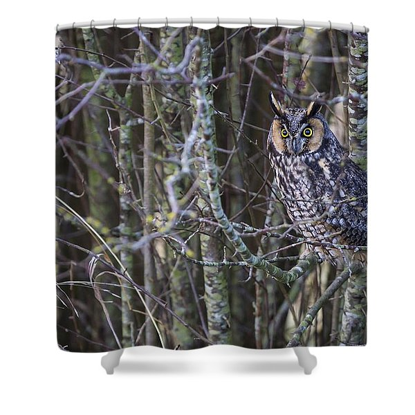 The Look Of Surprise Shower Curtain