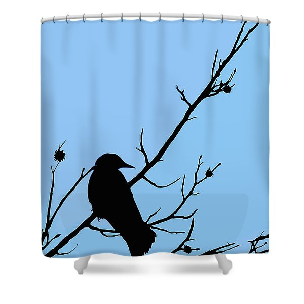 The Crows Lookout Post Shower Curtain