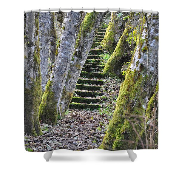 The Moss Stairs Shower Curtain