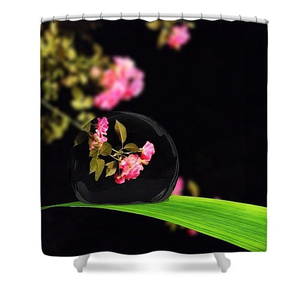 The Music Of The Night Shower Curtain