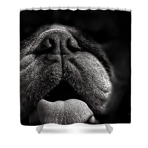 The Nose Knows Shower Curtain