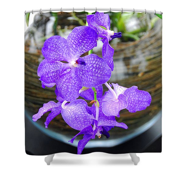 The Orchid Bowl Shower Curtain