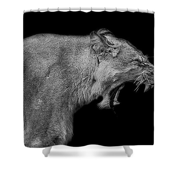 The Pain Within Shower Curtain
