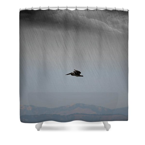 The Persevering Pelican Shower Curtain