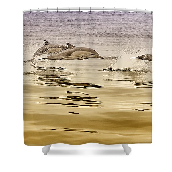 Shower Curtain featuring the photograph Dolphin Canvas Print, Photographic Print, Art Print, Framed Print, Greeting Card, Iphone Case, by David Millenheft