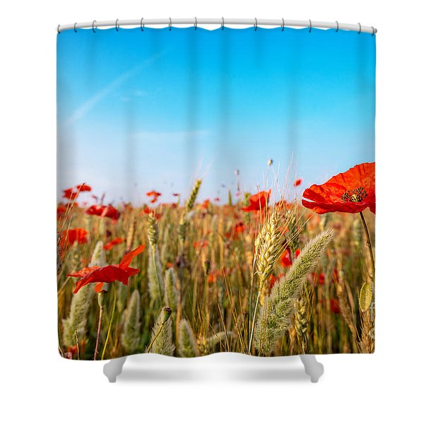 Summer Poetry Shower Curtain