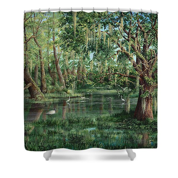 The Preacher And His Flock Shower Curtain