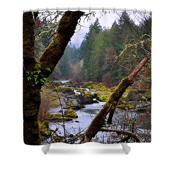 The River Through The Trees Shower Curtain
