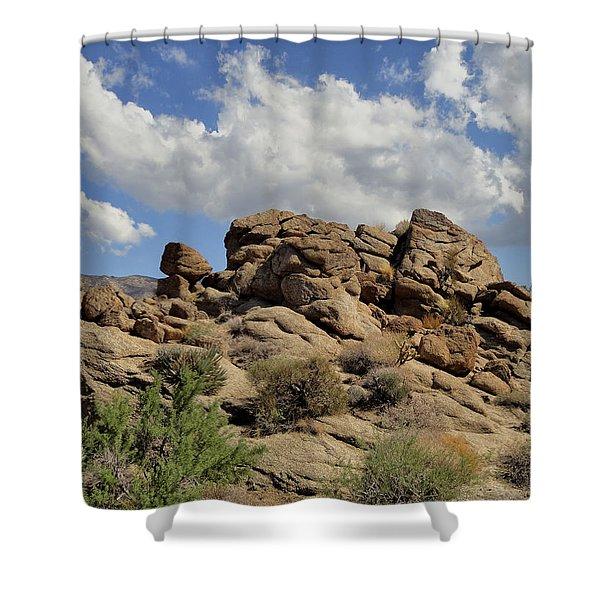 The Rock Garden Shower Curtain
