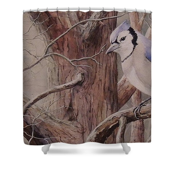 The Roost Sold Shower Curtain