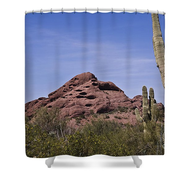 The Saguaro Cacti And Red Rocks Shower Curtain