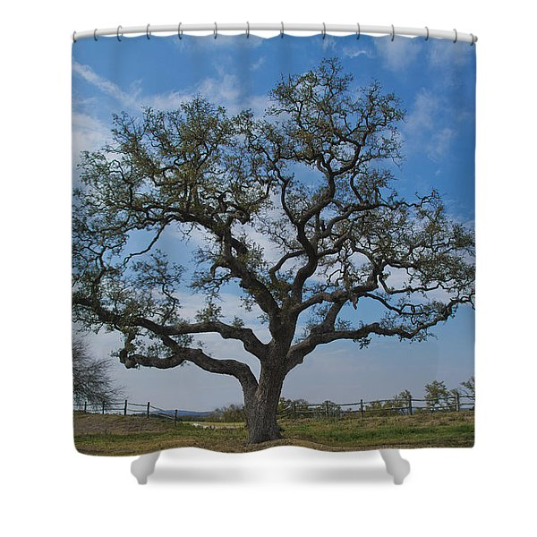 Shower Curtain featuring the photograph The Sentinel by Jemmy Archer