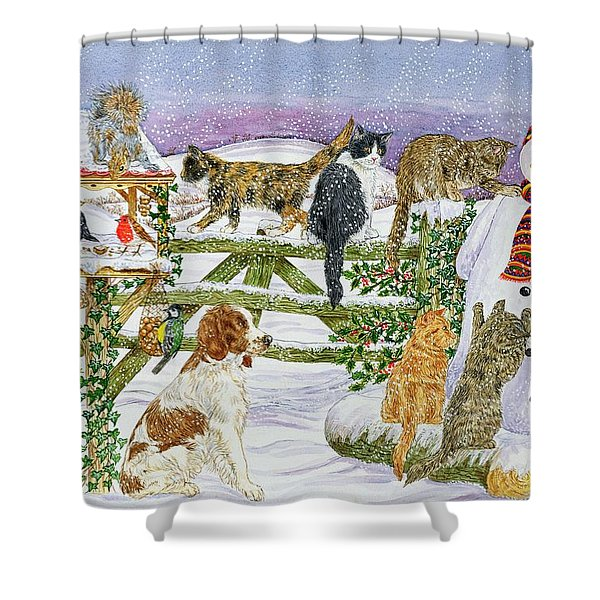 The Snowman And His Friends  Shower Curtain
