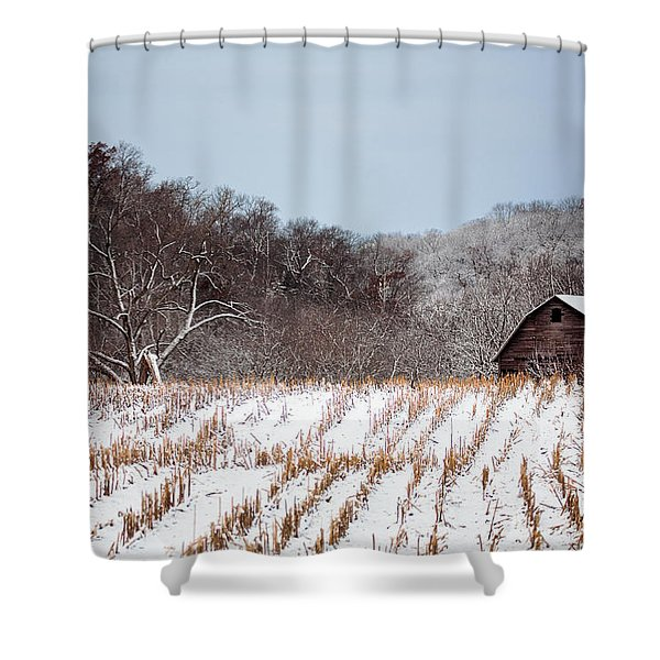 The Snowy Aftermath Shower Curtain