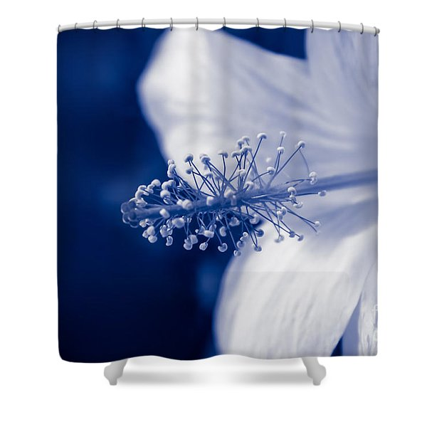 The Spring Wind Whisper Shower Curtain