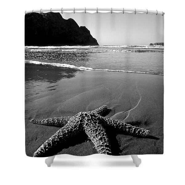 The Starfish Shower Curtain