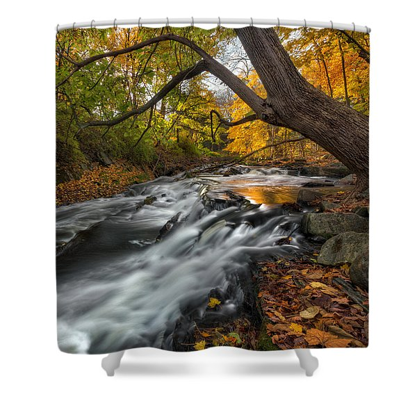 The Still River Square Shower Curtain