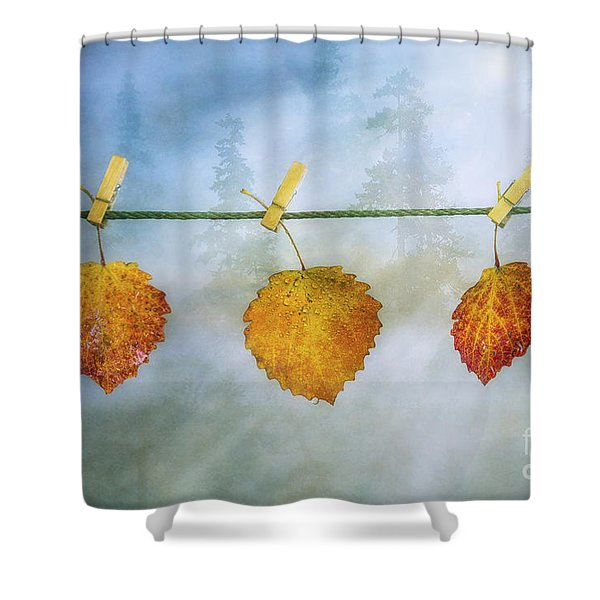 The Sun Shines Again Shower Curtain