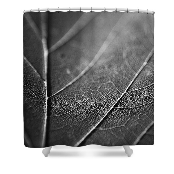 The Tributaries Of Life Shower Curtain
