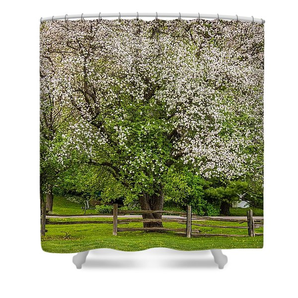 The Valley Awakens Shower Curtain