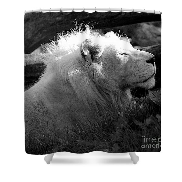 The White King Shower Curtain