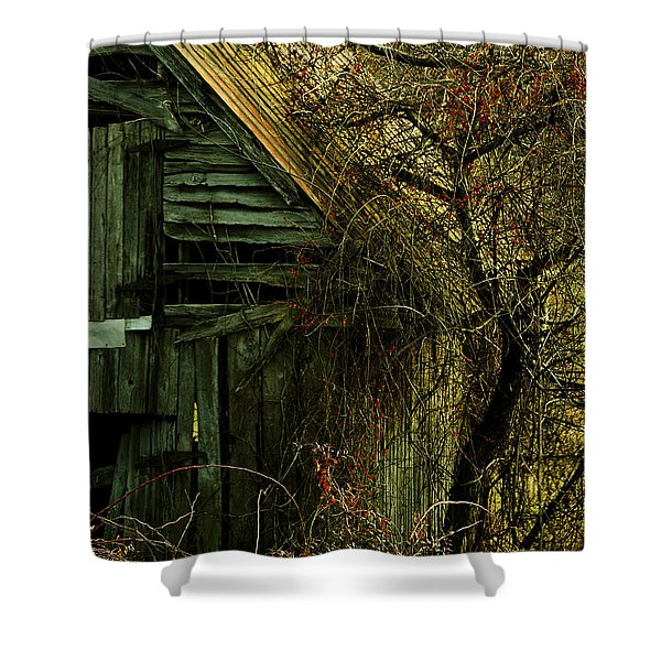 There Will Come Soft Rains Shower Curtain